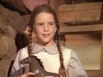 Laura Ingalls, Little House on the Prairie