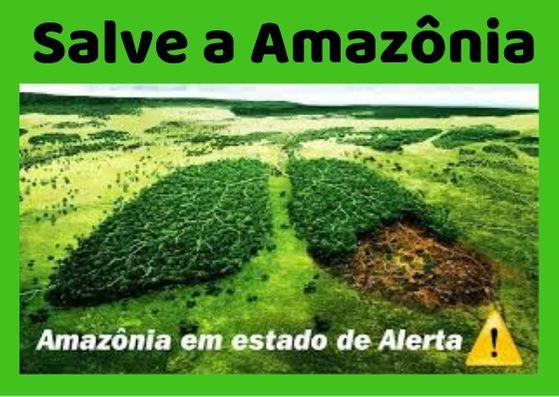 Salve a Amazônia, Pulmão em forma de floresta