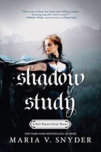 MSnyder-ShadowStudy