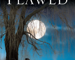 Flawed – a new book by Jen Kearns