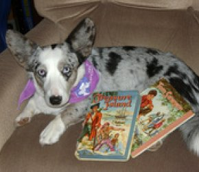 Reading to Rover!