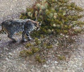 Robert Fobear 'Nature Embracing Wildlife'