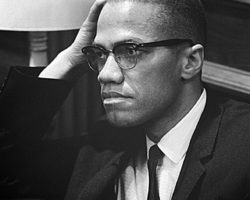 Remember Malcolm X with a political article