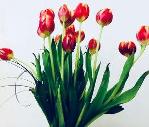 Flower Photo Three