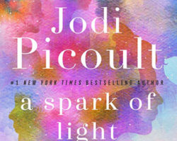 A Spark of Light – Review