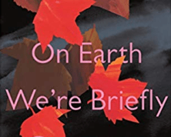 A review of On Earth We Are Briefly Gorgeous