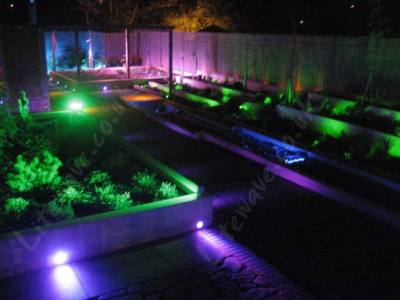 Garden illuminated with Colour Changing LED Spotlights