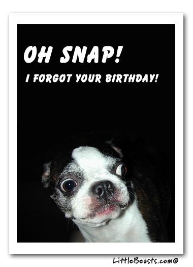 French Bulldog Happy Birthday Ecard