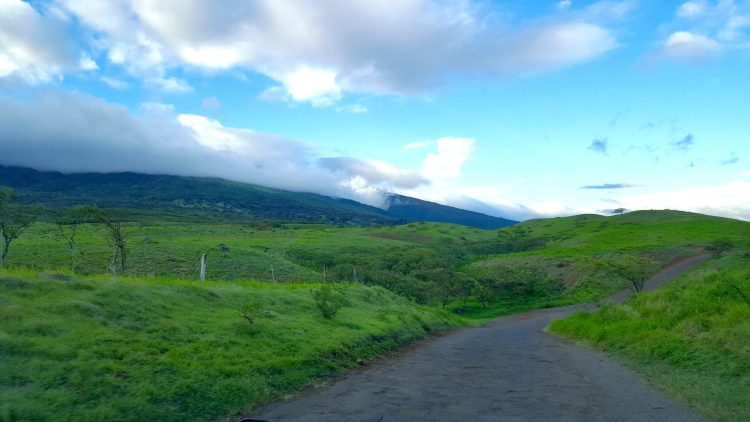 Uneven Asphalt Road in Maui Hawaii - Continue At Your Own Discretion!