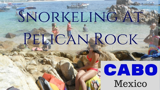 Tips For Snorkeling At Pelican Rock in Cabo San Lucas - Better Places to Snorkel?
