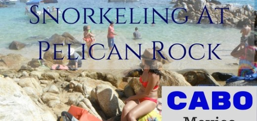 A Review of Snorkeling at Pelican Rock in Cabo Mexico