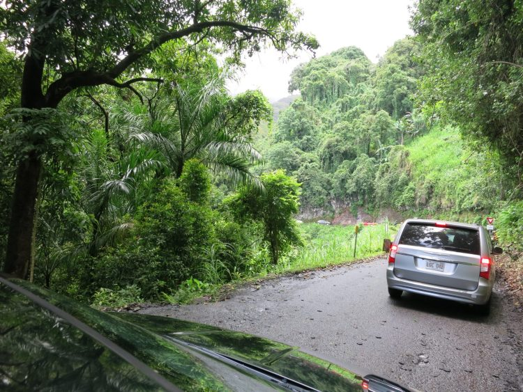 Tips For Road To Hana Drive