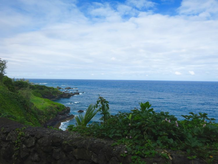 Seven Sacred Pools Along Road To Hana - What to do and see!
