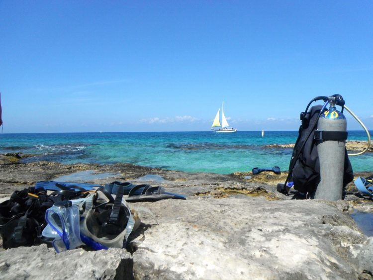 Dive in Cozumel Mexico! - 8 Reasons To Take A Cruise!