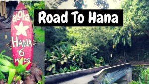The Road to Hana Stops - What to do and see on the road to hana