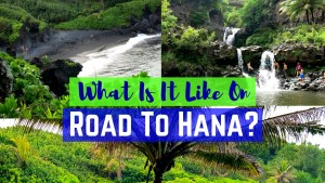 Road To Hana Video Tour! Learn about Road To Hana, Tips and What to see and do!