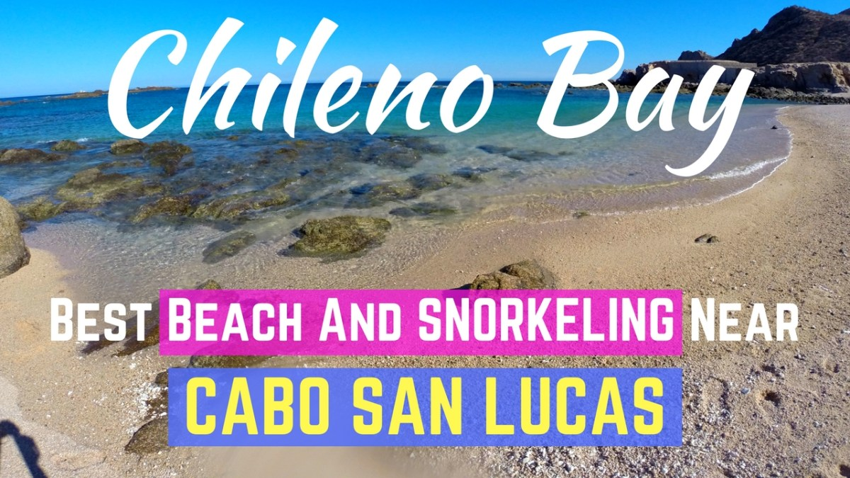 Chileno Bay - Best Snorkeling Near Cabo San Lucas and Info On How to Get There!