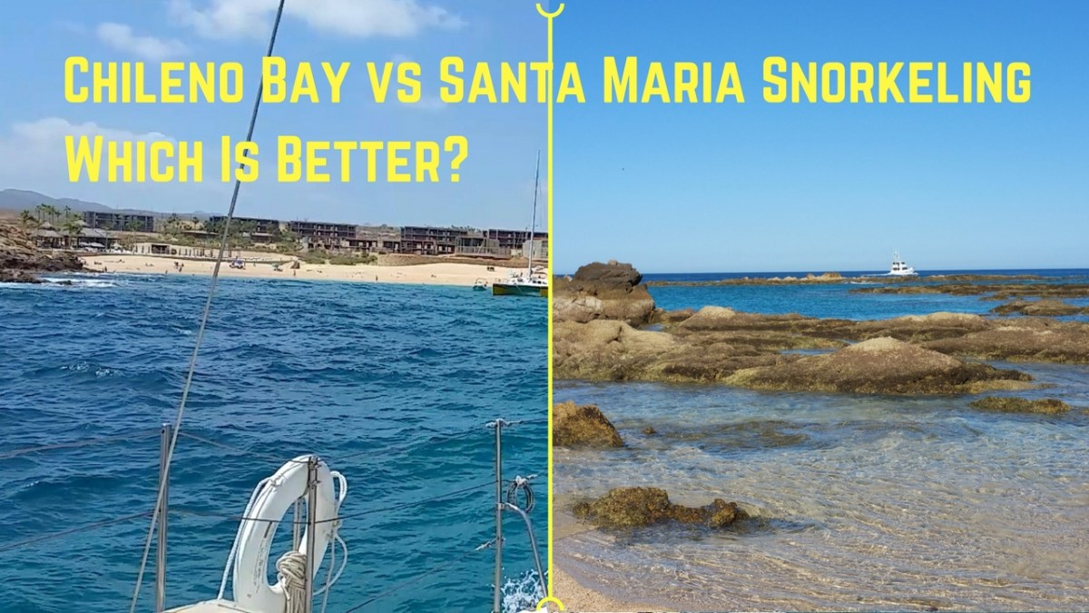Chileno Bay and Santa Maria Beach - Which beach has the best snorkeling ?