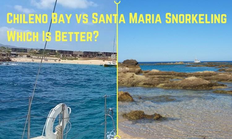 Chileno Bay versus Santa Maria Beach Snorkeling near Cabo San Lucas