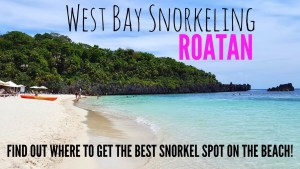 West Bay Beach and Snorkeling in Roatan - Watch the video here.