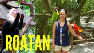 Gumbalimba Park Video - Roatan Honduras