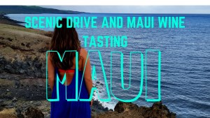 Maui's Road Less Traveled - A Guide To An Amazing Drive