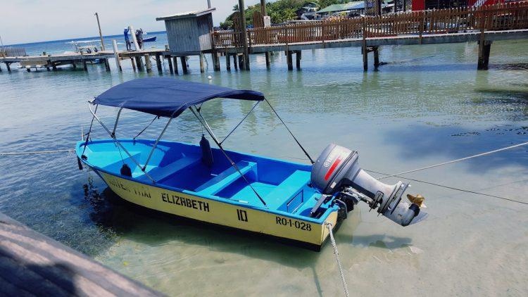 Water Taxi's in Roatan are readily available from West End and West Bay