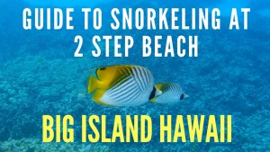 Big Island Hawaii Guide to Snorkeling at 2 Step Beach. The best snorkeling on the island!