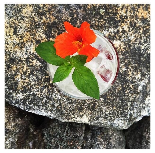 Little-bitte-cocktail-artisanal-catering-bar-3