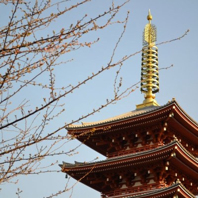 The Best Time to Visit Tokyo