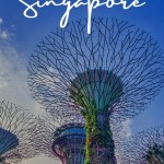 An underneath view of the super tree grove Singapore Gardens by teh Bay - Plan a tropical family trip to Singapore text overlay