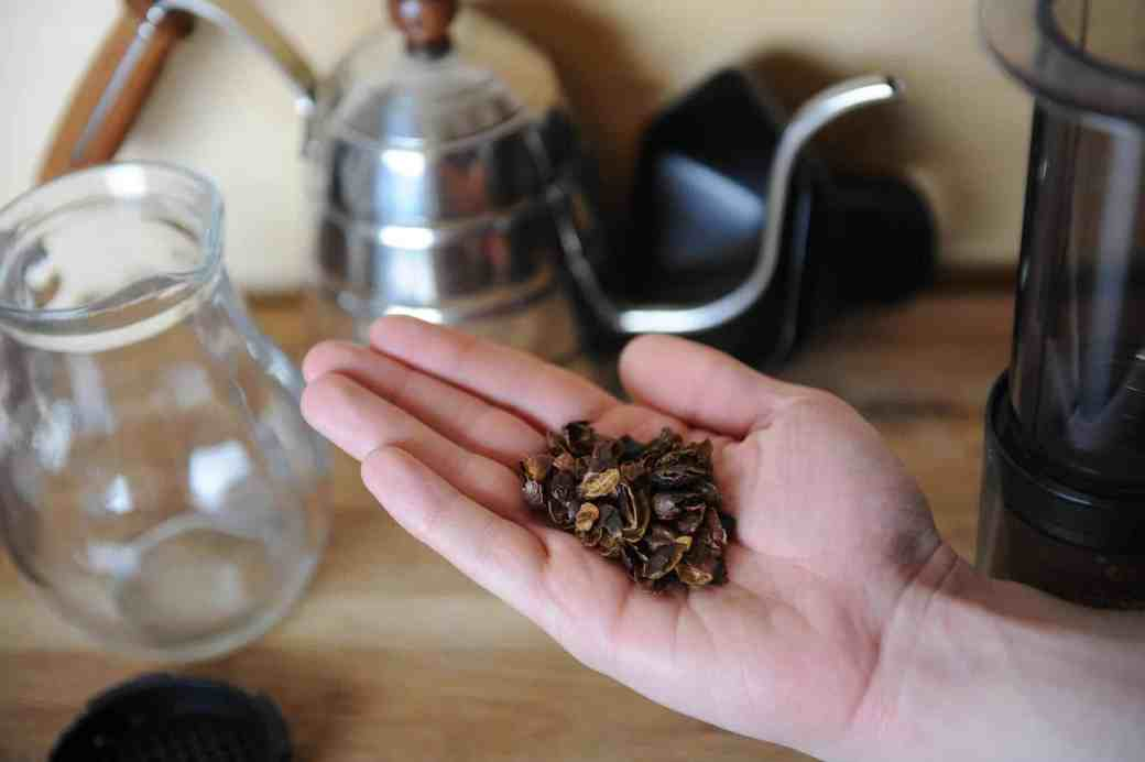 Image result for cascara coffee