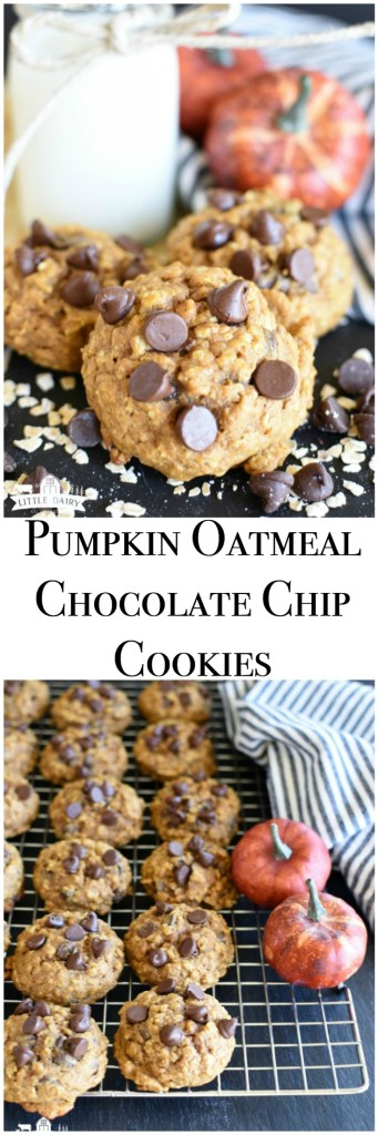 Pumpkin Oatmeal Chocolate Chip Cookies are melt in your mouth soft, extra moist, and have cozy fall flavors! www.littledairyontheprairie.com #pumpkin #oatmeal #oatflour #chocolate #cookies #chocolatechips #dessert #baking #recipe