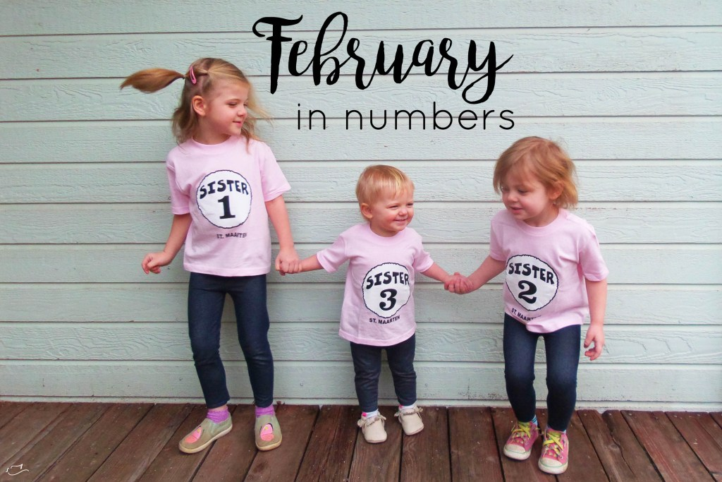 February in numbers, month in review