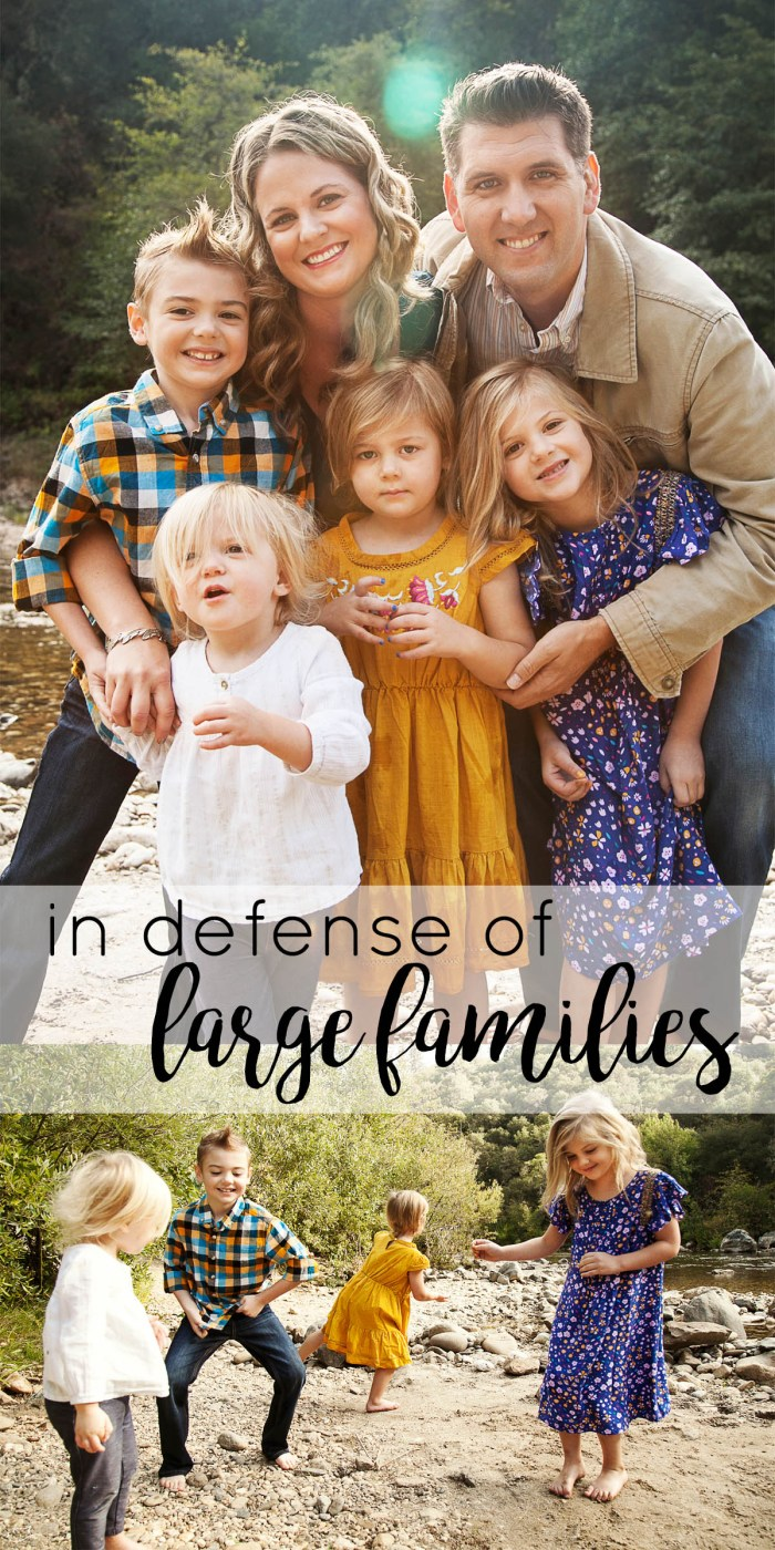 In Defense of Large Families, family size