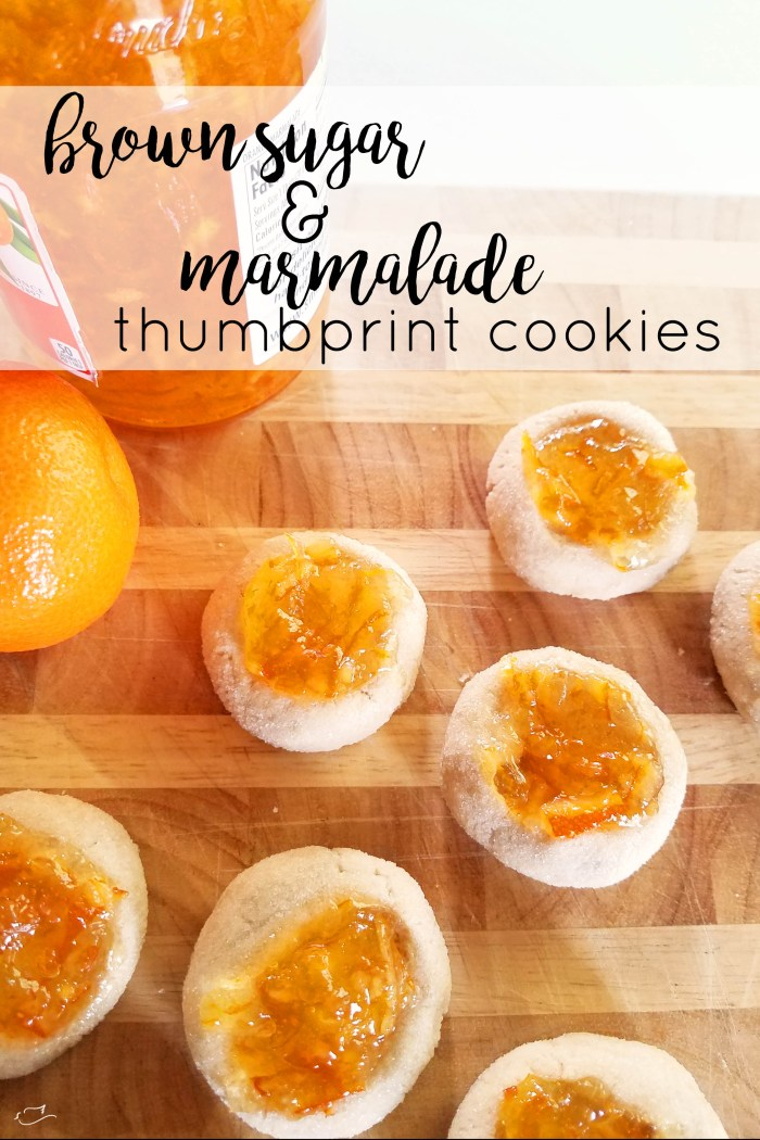 Justine Young. mom blogger at Little Dove blog shares a recipe for brown sugar and marmalade cookies and a review of Paddington Bear 2.