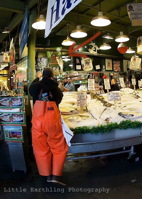 pike place market, fish tossing