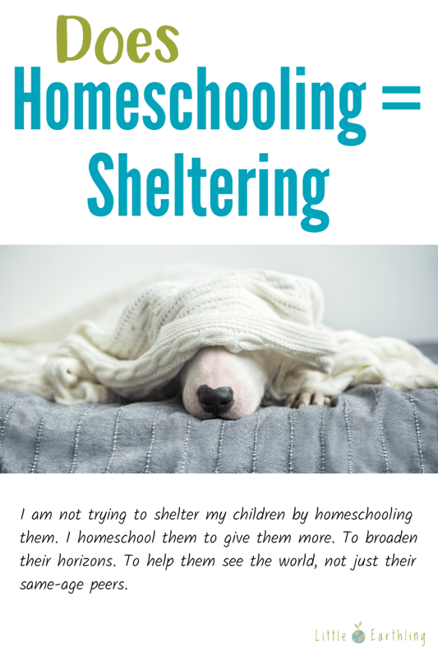 Does homeschooling equal sheltering?