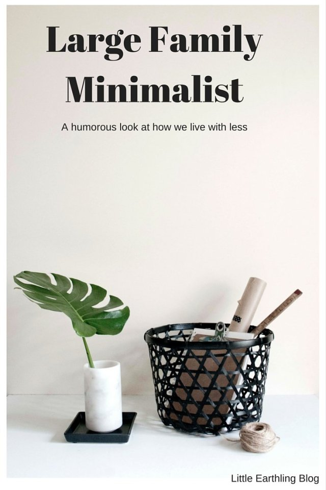 Large Family Minimalist. The surprising and humorous ways in which large families live with less.