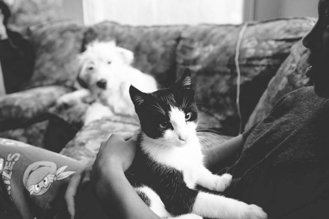 Duma the cat and Frodo the dog