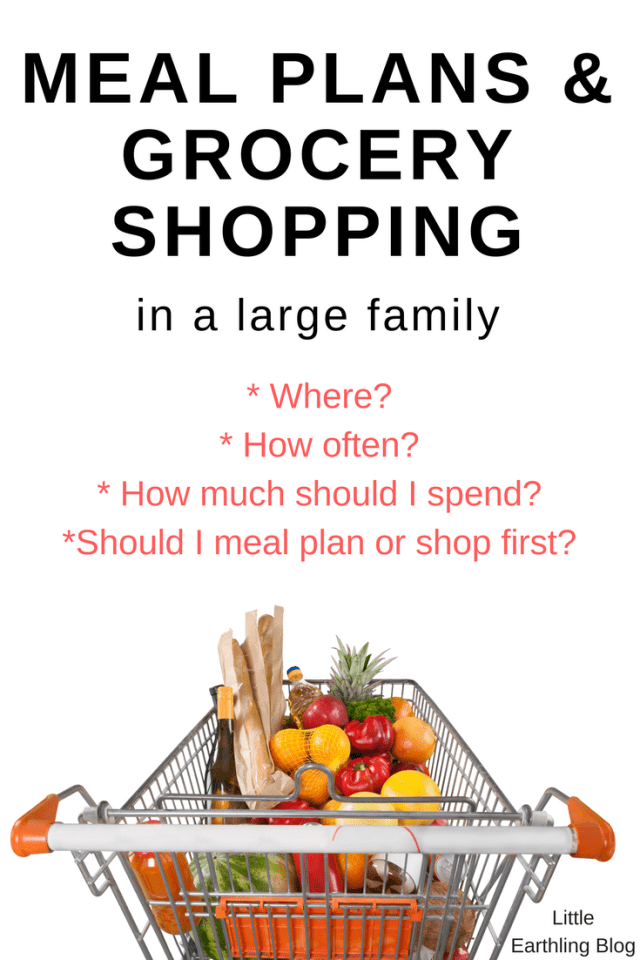 Meal Plans and Grocery Shopping tips for the Large Family