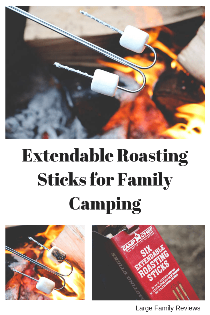 Extendable Roasting Stick Review
