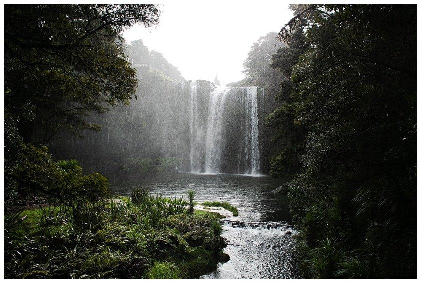 View of Whangarei falls.