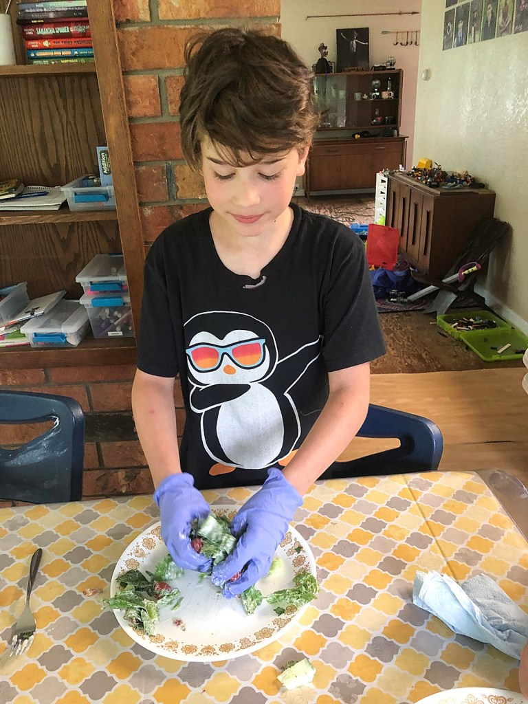 Apollo mixing his salad while wearing gloves.