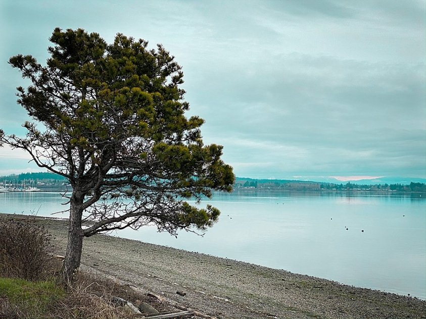 Beautiful view of Salish Sea from Simiahmoo Resort.