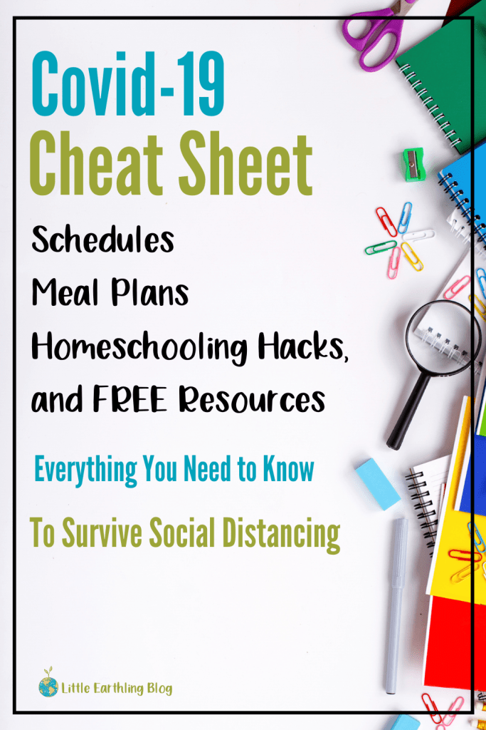 Homeschool Hacks: Free resources, unit studies, meal plans and schedules to survive Covid-19.