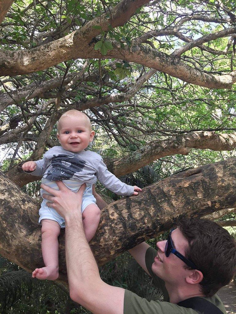 Judah holding Abel in a tree in New Zealand.