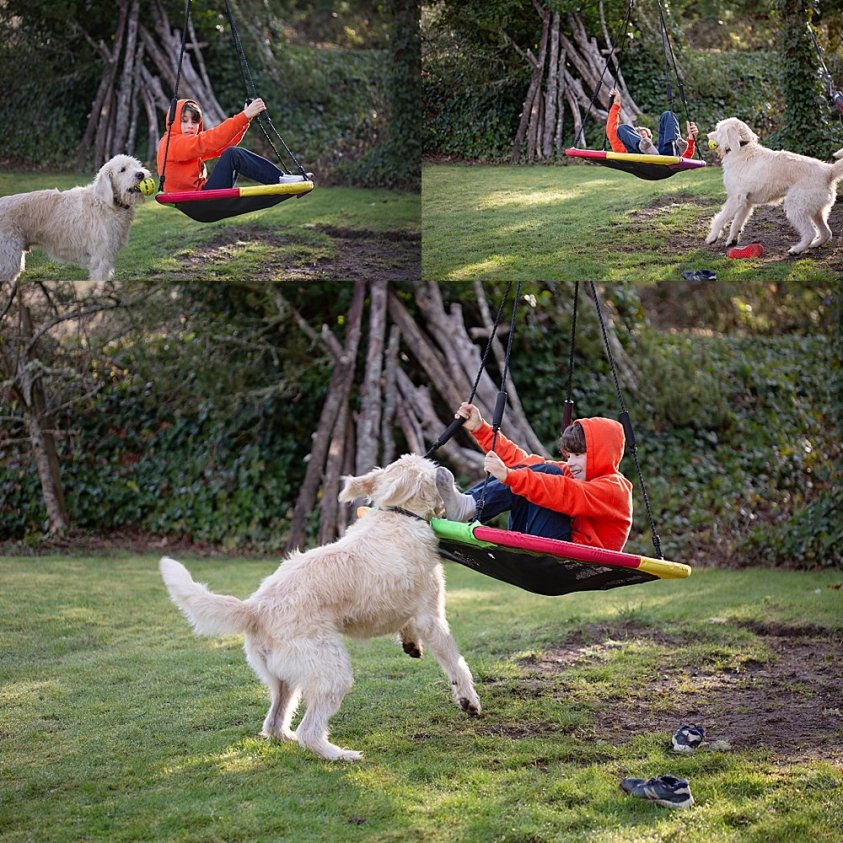 Apollo on his large swing in the front yard.