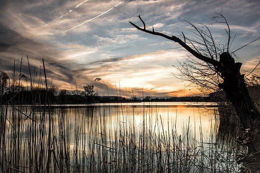 lake-1412216__340