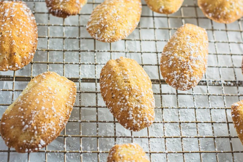 Enjoy a bit of these lovely French beauties right in your own kitchen, Madeleines with Hazelnut and Honey Cookies! Recipe @LittleFiggyFood